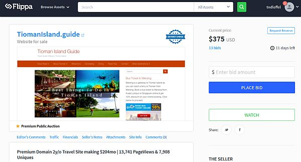 buying existing travel blog or website