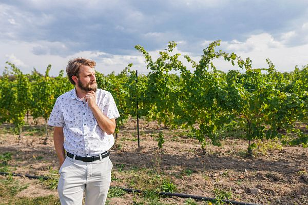 Jeremy wine blog